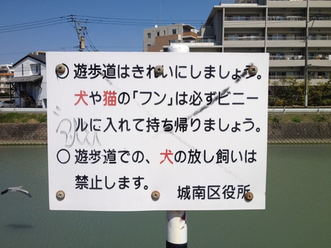 IMG_3127.JPG