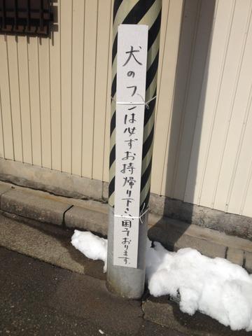 IMG_4049.JPG